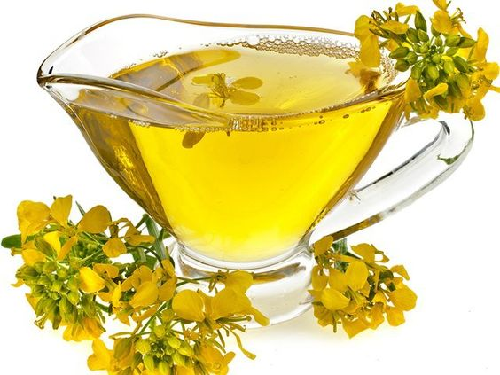 Photo of Tutti gli utilizzi della rodiola rosea, una pianta molto apprezzata in erboristeria
