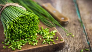 Photo of Erba cipollina: un'erba aromatica facile da coltivare e con tante proprietà
