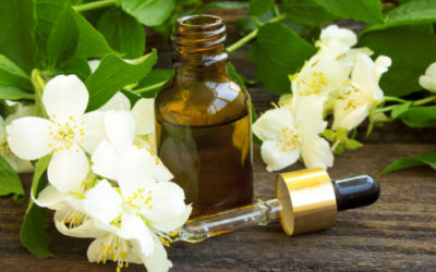 Olio essenziale gelsomino: proprietà e utilizzi