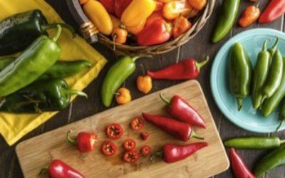Ricette con peperoni: pasta e secondi piatti