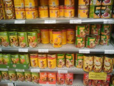 Photo of Mangimi per animali: la guida agli ingredienti per sceglierli al meglio