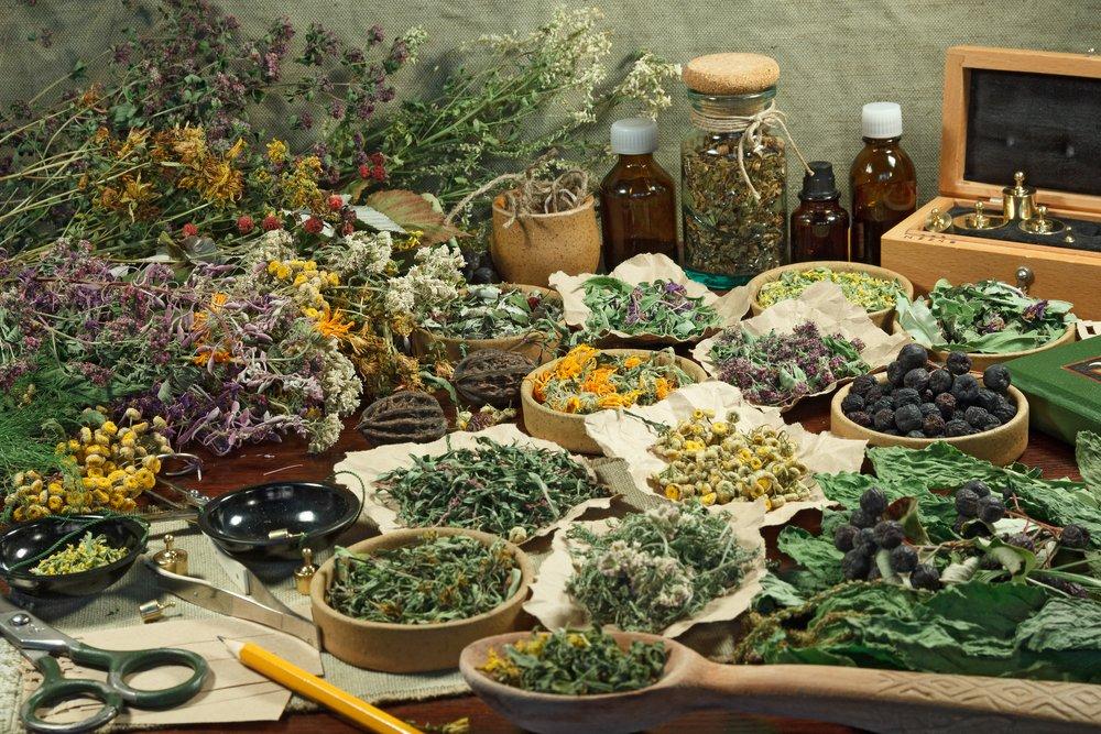 Photo of Fitoterapia: guida alle piante officinali per curarsi naturalmente