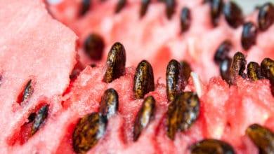 Photo of Semi di anguria, una risorsa inattesa: ecco come utilizzarli in cucina