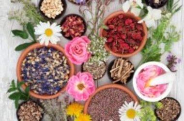Naturopatia, cos'è e quali sono i rimedi più diffusi