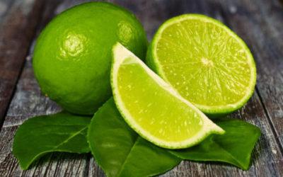 Lime frutto dalle notevoli proprietà e utilizzi