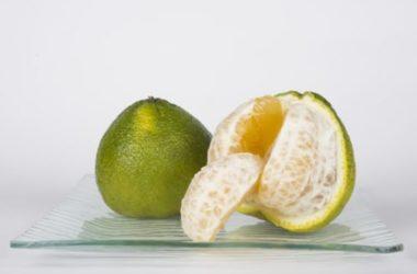 Tutto sul lime, un altro agrume dalle notevoli proprietà benefiche per il nostro organismo: consigli e ricette