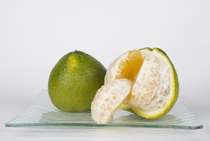 mapo frutto insolito utile per la salute tuttogreen ForMapo Frutto