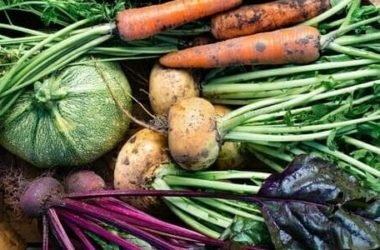 I lavori dell'orto di ottobre: cosa seminare, raccogliere e potare