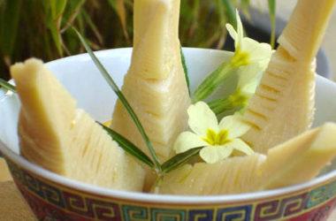 Germogli Bamb Prezzo.Germogli Di Bambu Proprieta E Benefici Tuttogreen