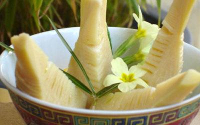 Germogli di bambù: proprietà e benefici