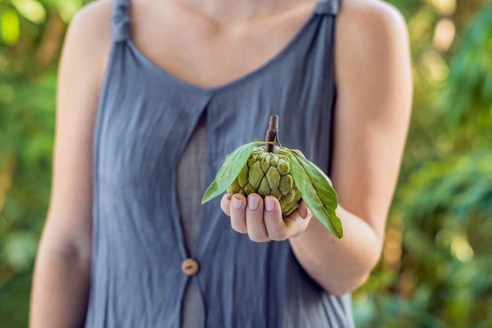 Photo of Cherimoya, un frutto esotico dalle proprietà davvero particolari