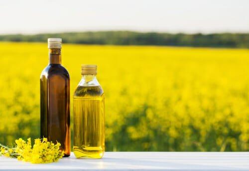 Photo of Quello che c'è da sapere sull'olio di colza e sulla sua variante dell'olio di canola