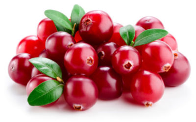 Mirtillo rosso: un alleato della salute, buonissimo da mangiare in molti modi