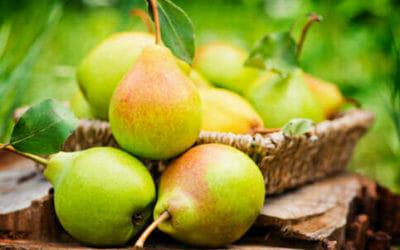 Pere frutto dalle molteplici proprietà e benefici per la salute