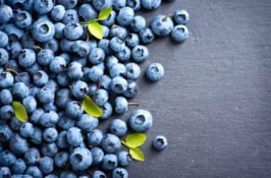 Tutto sul mirtillo nero, un alimento prezioso per la nostra salute