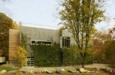 Una casa che si mimetizza nel bosco, splendido esempio di design sostenibile