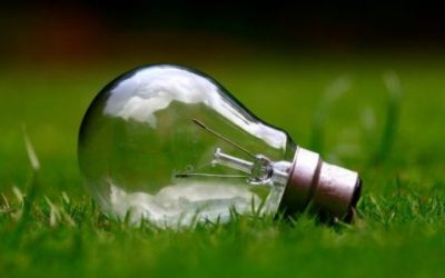 Energia elettrica per aziende: come individuare il trader migliore e l'offerta giusta