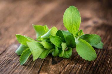Stevia: i benefici di questa alternativa allo zucchero