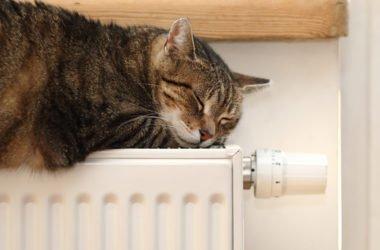 Risparmio energetico caloriferi: trucchi per risparmiare