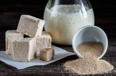 Pasta Madre: la ricetta per preparare il lievito naturale