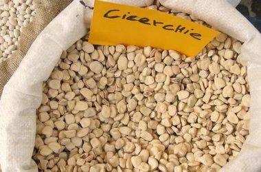 Proprietà e benefici della cicerchia, un legume antico che presenta alcune controindicazioni