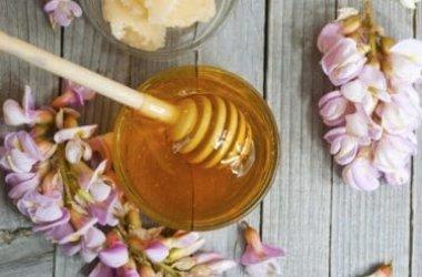 Tutte le proprietà del miele di acacia, uno tra i mieli più famosi e diffusi