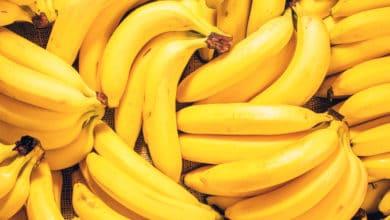 Photo of Guida ai benefici della banana, le proprietà ma anche qualche controindicazione