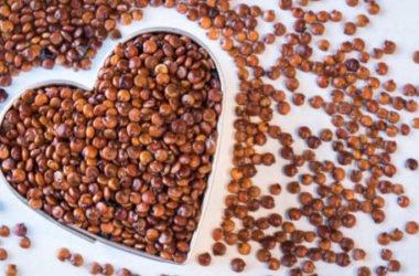 Quinoa proprietà: benefici, ricette e dove si compra