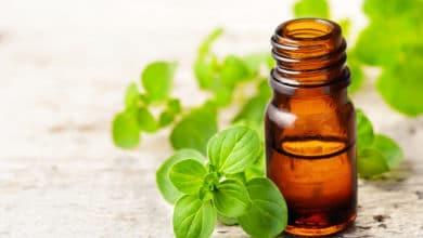 Photo of Tutto sull'olio essenziale di origano, un efficace antivirale, antibatterico e antisettico