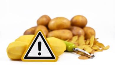 Photo of In quali alimenti si trova la solanina e come dobbiamo regolarci?