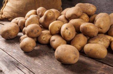 Tutto sulle patate: proprietà, benefici, ricette e consigli su come conservarle al meglio