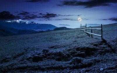 Fasi lunari: davvero influenzano l'agricoltura e come?