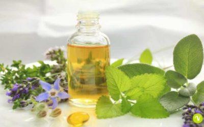 Olio di borragine: benefici per la pelle