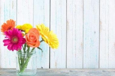 10 fiori primaverili facili da coltivare