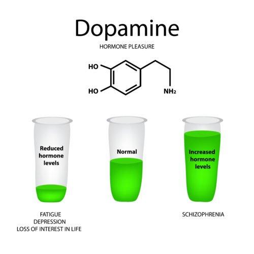 Photo of Dopamina, tutto sulla sostanza che regola il piacere