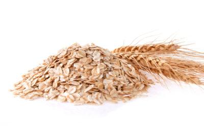 Tutte le proprietà e i benefici di questo antico cereale, l'avena