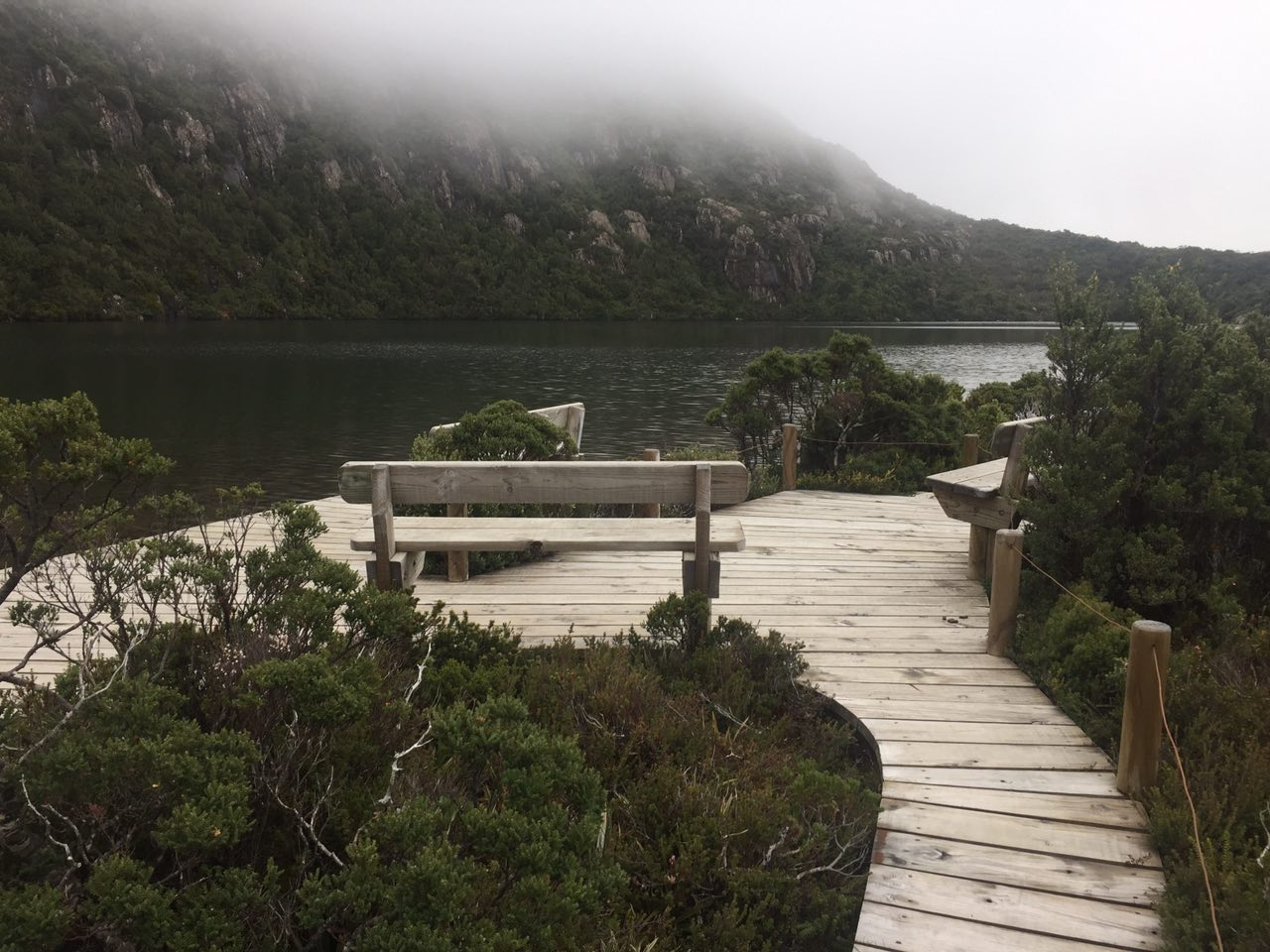 Photo of La conservazione dell'ambiente e l'eco-turismo in Tasmania: un caso esemplare