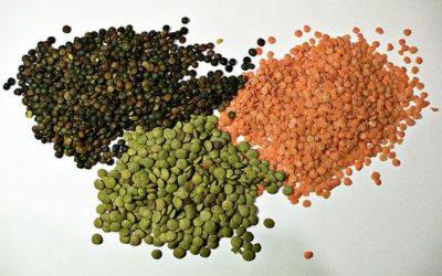 Proprietà, varietà, ricette con lenticchie