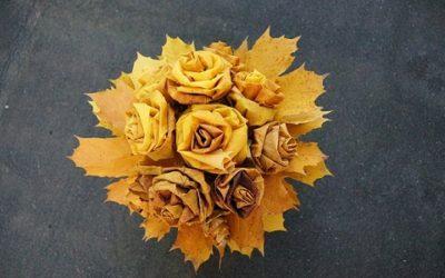 5 fiori autunnali facili da coltivare