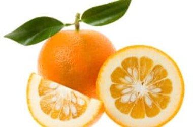 Arancio amaro, proprietà e utilizzi del neroli
