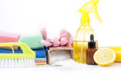 Prodotti biologici per la casa: le pulizie di casa si fanno eco!