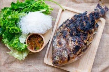 Tilapia, tutto sul pesce più mangiato al mondo