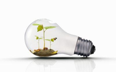 Come fare la raccolta differenziata delle lampadine tuttogreen