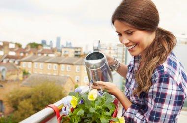 Orto sul balcone: guida pratica alle piante da terrazzo