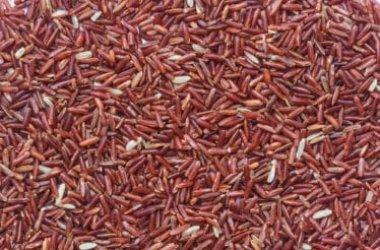 Scopriamo tutto sul riso rosso, benefici, e cottura e ricette