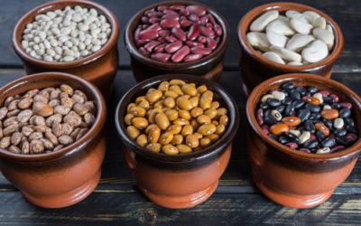 Fagioli ricette, proprietà, benefici e coltivazione