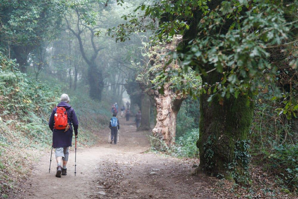 Photo of Scoprire la Via Francigena: a piedi o in bicicletta