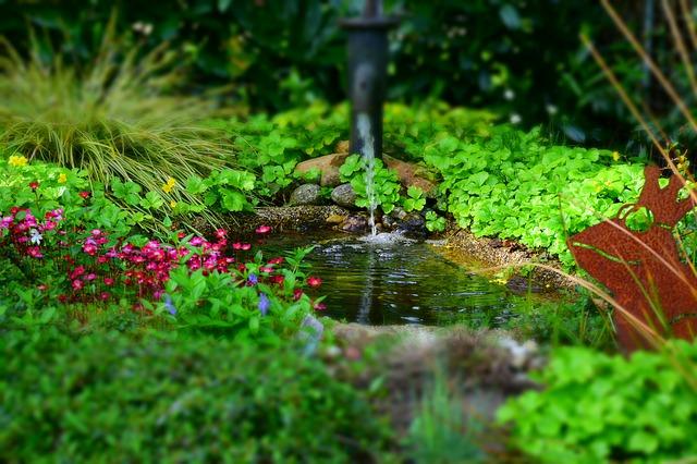Laghetto o stagno da giardino ecco come farlo tuttogreen for Costruire uno stagno