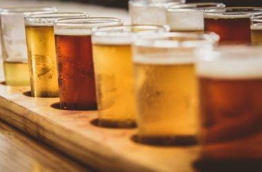 Birra biologica: dove trovare le migliori birre