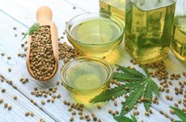 Proprietà e utilizzi dell'olio di canapa, un prodotto naturale tutto da scoprire e senza sostanze psicoattive!